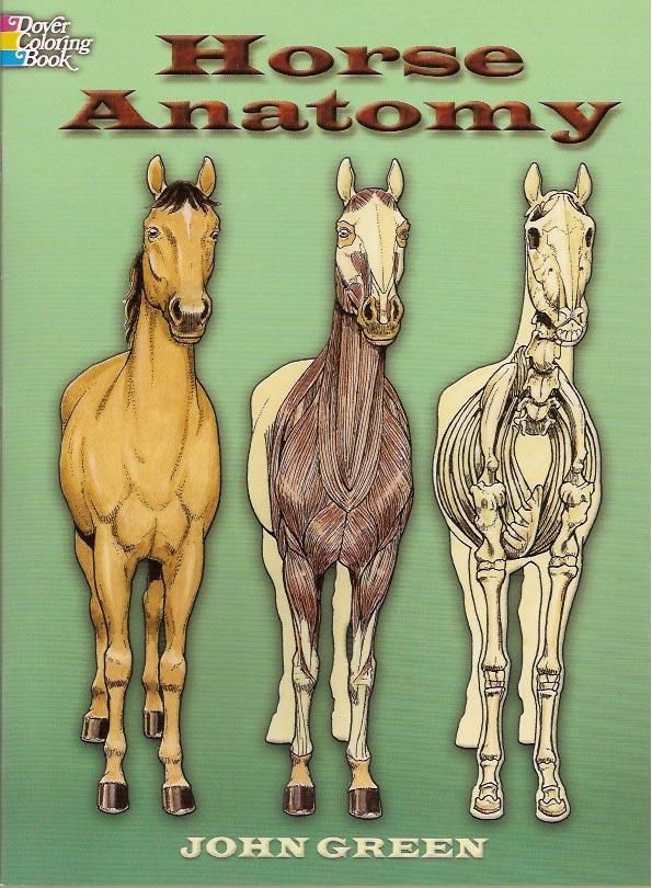 horse_anatonmy_cover